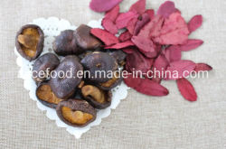 Style séchés Fruits et Légumes déshydratés vide Vf Shiitake