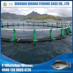 L'aquaculture cage de poissons de ferme avec cage Net flottant