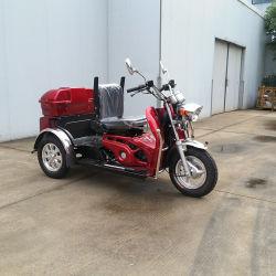 110cc três rodas Elder pessoas usam não de segurança do Motor