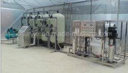 Commerce de gros 30t/h Système de purification par osmose inverse RO Usine de traitement de l'eau