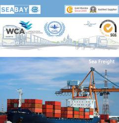 Ozean Freight Shipping From China nach Lateinamerika