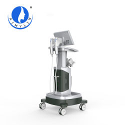 Hohe Intensitäts-Fokus-Ultraschall Hifu 2s Newface Schönheits-Salon-Gerät