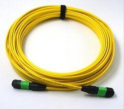 Aus optischen FasernSteckschnür der Datenübertragung-MTP