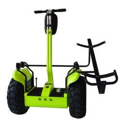 Golf verwanztes Ecorider elektrisches Chariot-Cer-anerkannter elektrischer Golf-Roller