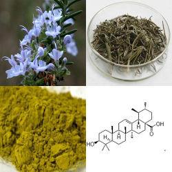 NuturalのプラントエキスのローズマリーのエキスのCarnosic Rosmarinic酸のUrsolicの酸の工場供給