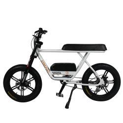 제거된 건전지를 가진 공장 공급 할인 가격 750W 전기 자전거