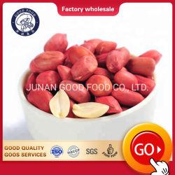 Noyau de l'arachide, Arachis séchés arachides Arachides Raw/peau rouge fraîche pour la vente d'Arachis