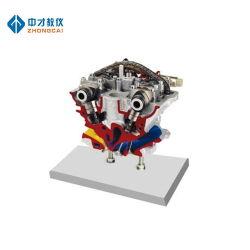 Modèle de vérin disséqués Instrument de formation pour moteur diesel