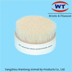 Het Witte Dubbele Gekookte Varkenshaar van Chungking