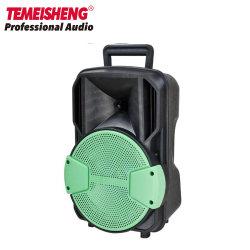 Temeisheng 8-Zoll-Griff Lautsprecher für im Freiengebrauch