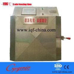 Flüssiger Stickstoff-kälteerzeugende Gefriermaschine