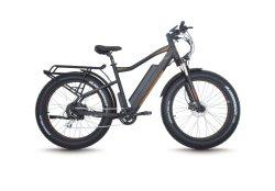 """48V500W 26""""Neumático Fat bicicleta eléctrica para las ventas (FR-TDE10Z)"""