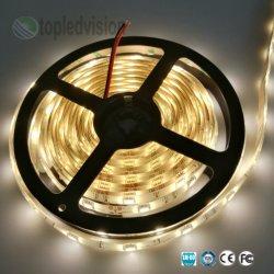 مصباح سلب الشريط SMD5050 عالي السطوع LED بجهد 12 فولت من التيار المستمر