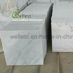 벽과 바닥 깔개와 클래딩을%s 채석장 오너 M500 Gx 백색 대리석 도와