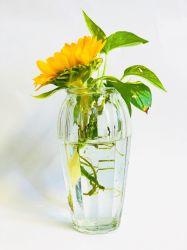 Crystal Ins vaso decorativo estilo vaso de plantas de Flores Floral Decoração de contêiner para o Office Home cozinha,
