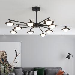 Новые страны Северной Европы современной гостиной обеденный зал с двумя спальнями освещения люстра