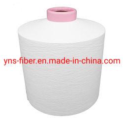 Filato del poliestere PBT del fornitore della Cina in POY piano e strutturato