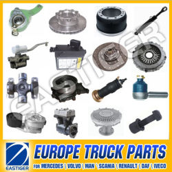 Более 600 пунктов Auto запасных частей для автотранспорта Scania