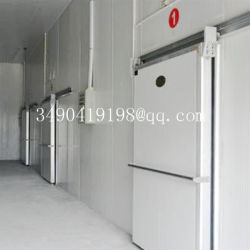 Handelsböe-Gefriermaschine-Kaltlagerungs-Raum
