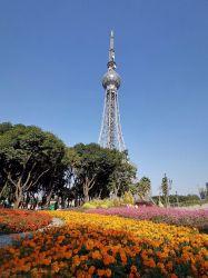 تلفزيون إشارة فولاذ برج/اتّصالات زاوية فولاذ إتصال برج أنبوبيّة