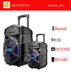 Professioneller beweglicher (Laufkatze-) Lautsprecher mit Batterie Bluetooth (BY8)