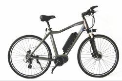 普及した700c Central Man E-Bike