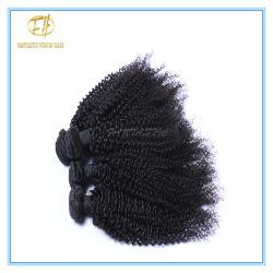 Il taglio riccio crespo brasiliano dei capelli umani del grande delle azione 9A nero superiore del grado da un donatore con la cuticola piena ed allinea lo stesso senso Wf9-005