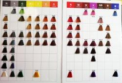 Beste kosmetische Produkt-permanente Kosmetik, die Haar-Farbe 100 ml färben