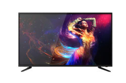 43deld polegadas LCD populares de TV LED TV inteligente televisores de ecrã plano