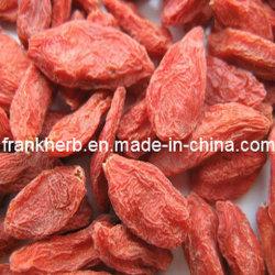 Органических сушеных фруктов (Wolfberry Goji)
