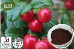 赤いBilberryのエキス; アントシアニジン10%、15%、20%、25%