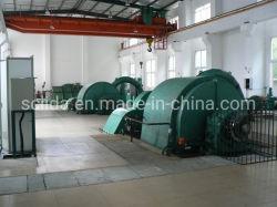 Disposizione e costruzione della centrale elettrica dell'acqua