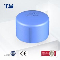عرض أزرق بأنبوب بلاستيكي PPPR يقلل الغطاء الطرفي OEM