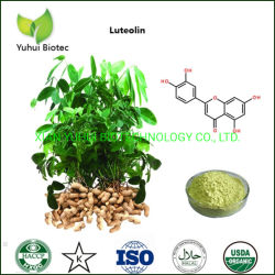 Extracto de piel de maní de alta pureza Luteolin CAS No 491-70-3
