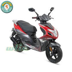 erwachsener Roller-Treibstoff-Minifahrrad des Gas-50cc R8 50 (Euro 4)