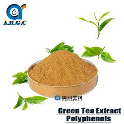 Los polifenoles del extracto de té verde orgánico 30%-98% para el poderoso antioxidante