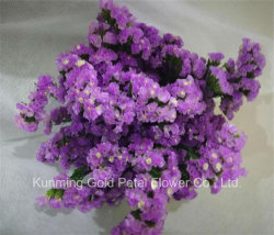 販売可能な高品質の最もよいギフトのみずみずしい花Lavander Statice