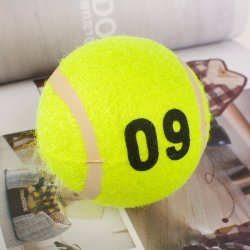 In het groot Diverse Bal van het Stuk speelgoed van de Hond van het Tennis van het Stuk speelgoed van de Opleiding van het Huisdier van de Kleur