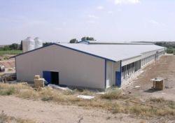 Fábrica de profissionais a exportação directa Eco-Friendly Pronto totalmente mobilados com um design moderno, casa de PET de frango