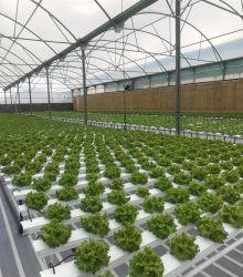 Sistemi di crescita idroponici Greenhouse canale NFT per alimenti