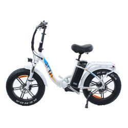 2021 Neues Design Lady Frame Big Power E-Bike Fat Tire Elektrisches Fahrrad