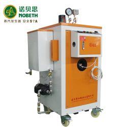 Installation facile de 300 Kg/h la pasteurisation du générateur de vapeur de carburant gaz
