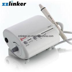 CE PIC de la FDA UDS-d'une LED à ultrasons dentaire Scaler