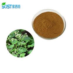 SOST extracto vegetal a base de Hierbas en Polvo Extracto de Raíz de granza