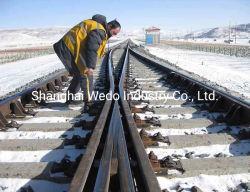 Participación del ferrocarril cruzando por la UIC60 Rampa con 60e1a1 Switch Rail