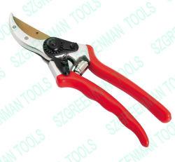 """Сад Siccors 8"""" с титановым покрытием нож, 20мм филиалов"""