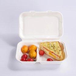 """De biologisch afbreekbare Plaat van de Doos van de Container van de Lunch van het Papier van de Pulp van de Container van de Doos van het Voedsel Composteerbare 9 van het Suikerriet Duim van Voedsel 10 van de Bagasse """" de Doos van de Container van de Plaat"""