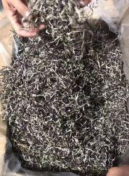 2019 Natural chineses bons preços no atacado fungo Preto secas