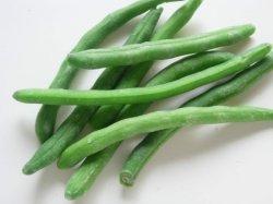 Haricots verts congelés de haute qualité