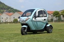Heißer verkaufender elektrischer Trike Roller mit Motor 2200W